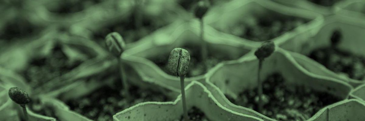 Conditions are tricky for seed investors.