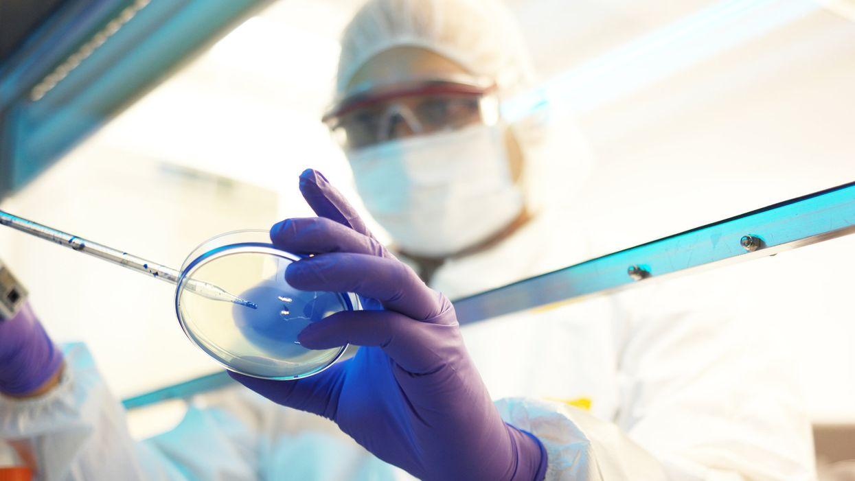 Scientist in biotech lab