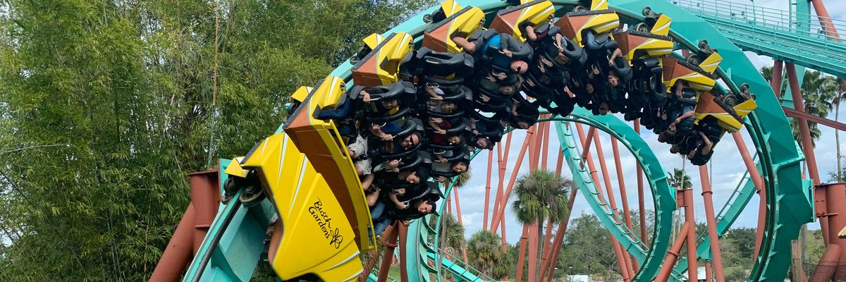 The crypto roller coaster rides on