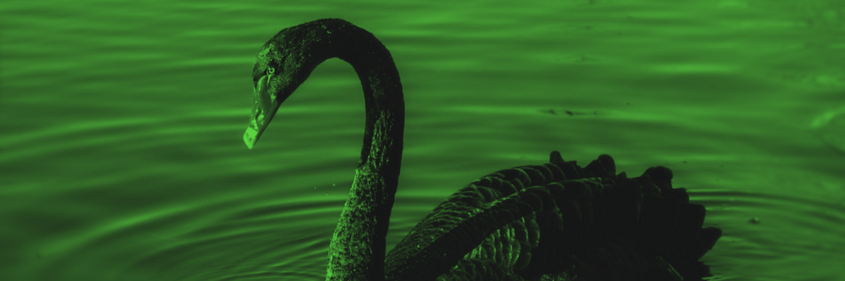 A year after the 'Black Swan' memo