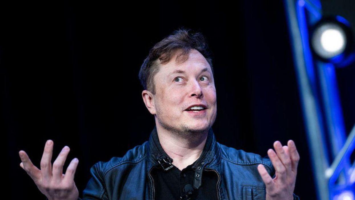 Elon Musk gestures with both hands.